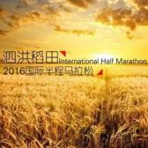 2016 泗洪稻田国际半程马拉松
