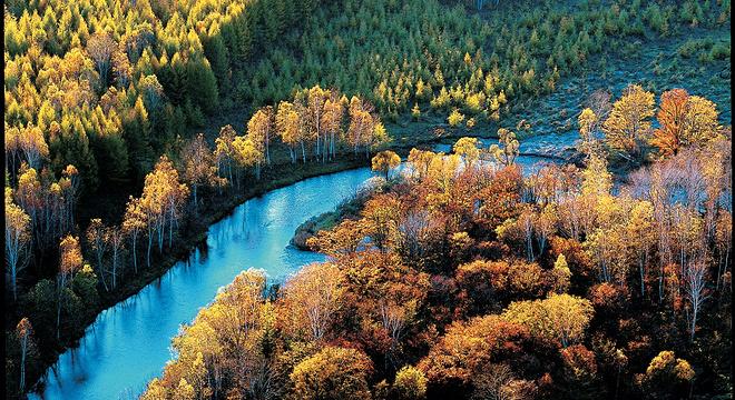 伊春国际森林马拉松