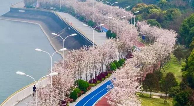 """""""首创奥莱.奥跑中国""""奥林匹克体育中心大众路跑全国系列赛杭州站"""