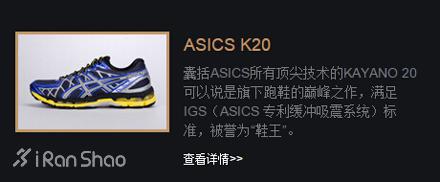 Asics Kayano 20