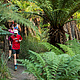 塔拉维拉越野赛  (Tarawera NZ)