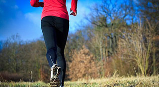 """跑快跑慢怎么算?心率训练全解析(一)——""""小马过河""""的跑步强度"""
