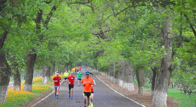 中国海宁追潮马拉松赛
