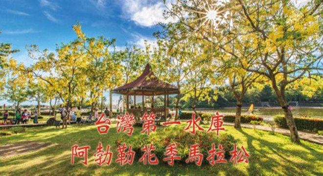 台湾第一水库阿勃勒花季马拉松