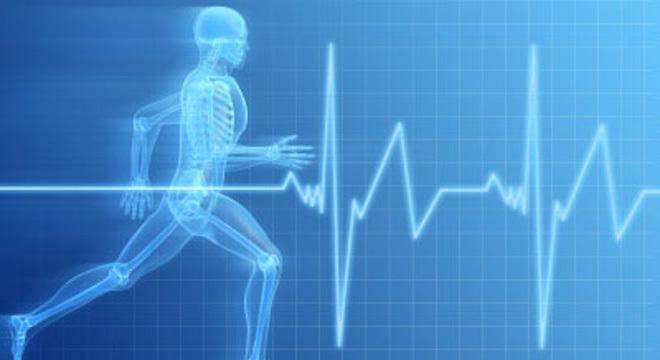 """怎么用好心率表?心率训练全解析(二)——从""""心率区间""""谈起"""