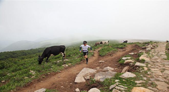 北京之巅灵山超级马拉松越野赛