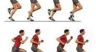 《跑步,该怎么跑?》读后感