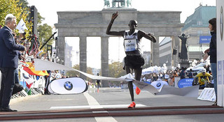 荣耀与耻辱: 2014 世界马拉松纵览