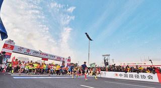 独家 | 2016南京马拉松全信息 看着一篇就够了