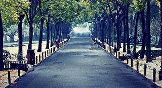 跑过风景跑过你—杭州怎么跑之路跑篇