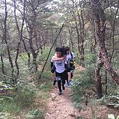 2017大连西郊国家森林公园、西城生态旅游度假区第二届国际运动节暨国际越野赛