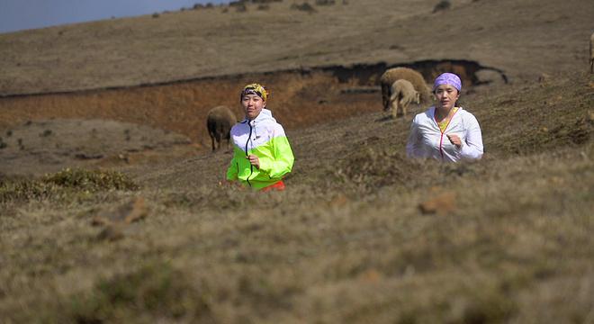 """4月23日,2016中国盘县""""杜鹃杯""""首届女子山地马拉松将在美丽的乌蒙大草原上鸣枪开赛。届时,来自世界各地的""""巾帼""""英雄们将云集在此圣境中。在怒放的杜鹃花海里,千余名女性将女性之美、运动之美、自然之美完美的缩印在乌蒙大草原上!共同描绘出西南地区首届女子马拉松的美丽的风景。"""
