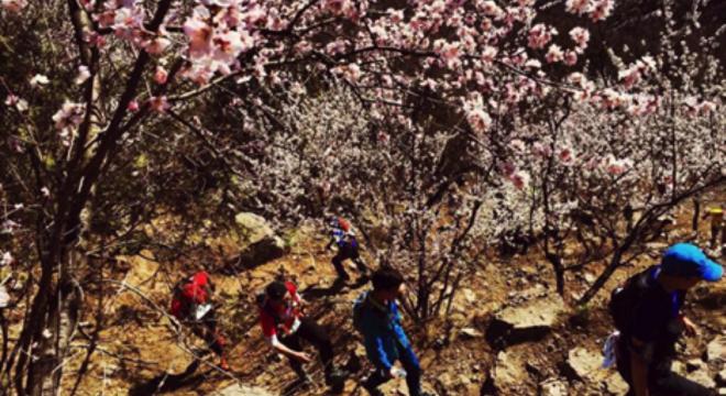 北京三峰连穿越野挑战赛春季赛暨第五届北京山地马拉松