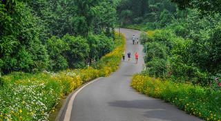 跑在重庆—青山绿水秀山城