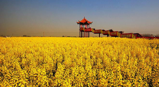 湖北沙洋江汉运河国际半程马拉松