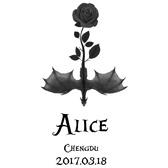2017 爱丽丝仙径越野赛 - 成都站