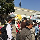 2015大阪马拉松
