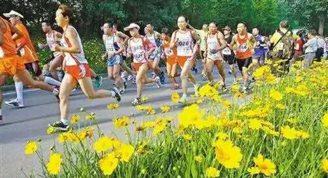 上海植物园公益欢乐跑