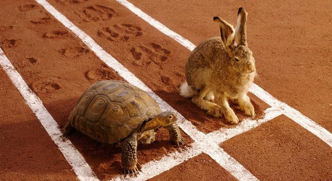 深度 | 爱好者与专业的马拉松选手有哪些差距,后者又具备哪些特质?