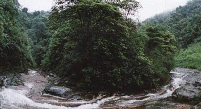 """""""习酒杯""""首届中国·习水 北纬28.3最美森林全国山地穿越挑战赛"""
