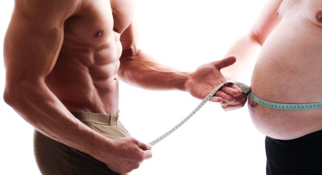 肥胖的标准—谁是脂肪重度携带者?