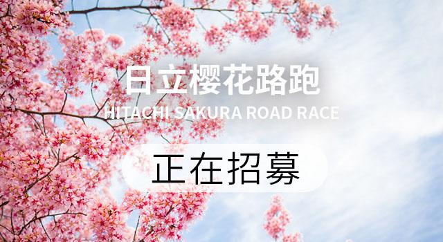 春节自救指南高清图片