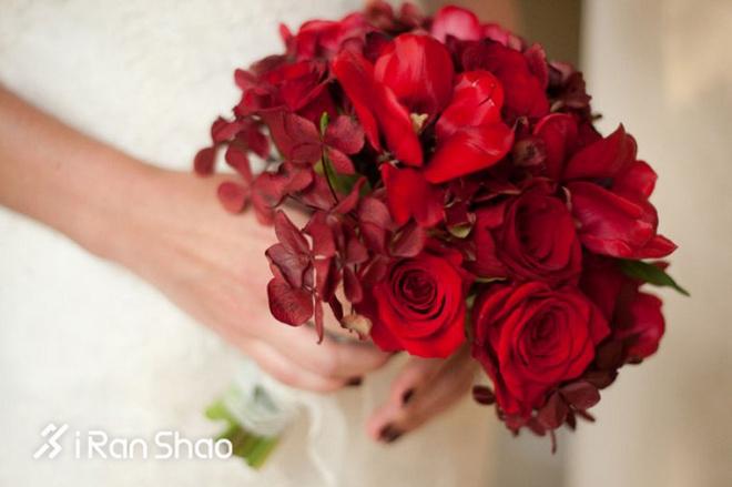 http://pic.iranshao.com/photo/image/e86c2763e5aa4fb1b0209a09e224b031.jpg!w660