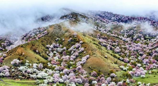 中华福寿山国际越野赛