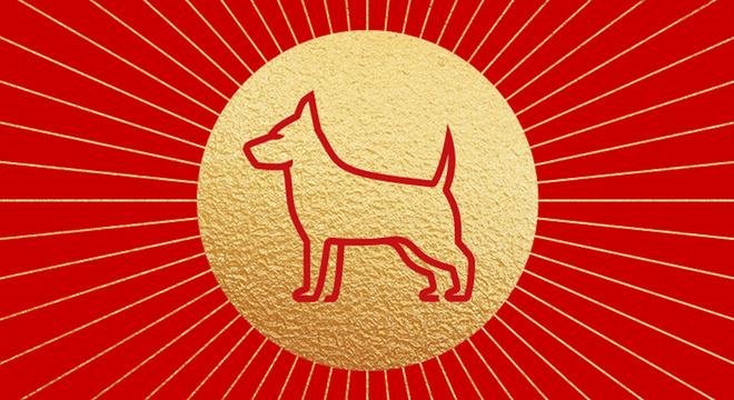 专栏   如何规划你的狗年跑步大计