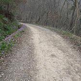 2017环紫金山越野挑战赛 | 穿越30公里的春天