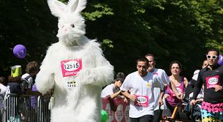 当兔子的人都是在自讨苦吃吗?