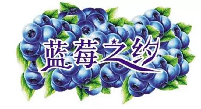 2019 贵州黔东南.麻江第四届蓝莓山地半程马拉松赛