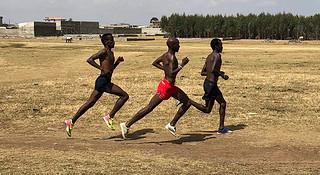 训练 | 不要再看月跑量啦,科学跑者都在用周跑量衡量训练状态