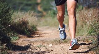 每周跑多少次适合我?——训练频率面面观