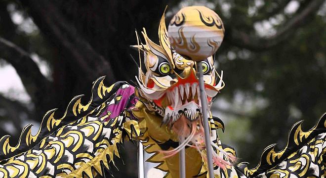 广马|岭南醒狮一声吼,好花开满荔枝湾