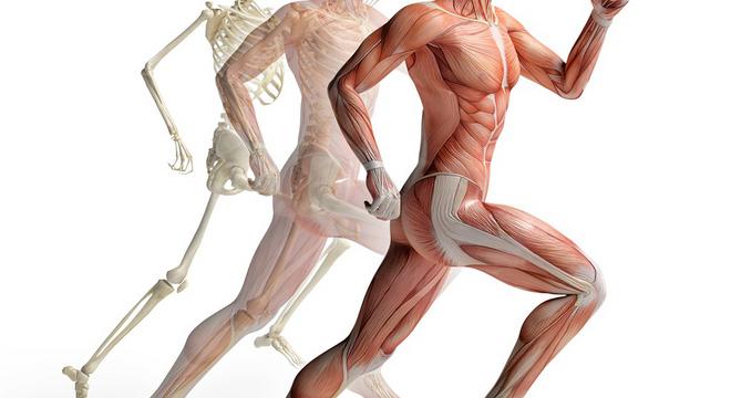 运动教室 | 无伤跑更快?力量训练必不可少!