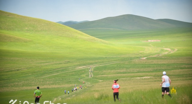 去草原上撒个野,值得参加的铁木真草原马拉松