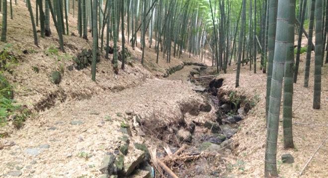 适度越野—九龙湖越野赛30公里线路报告
