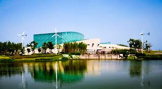特斯拉为你领跑!—上海首届新江湾城8公里报名启动