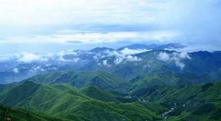 竹林穿越,莫干山首迎百公里越野赛