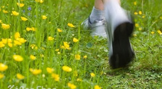 春天到了,跑步吧!