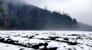 探路 | 银装素裹,江南印象之绍兴茶园山地半程马拉松