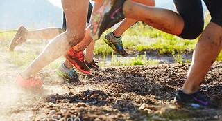 2014赛事年终评选 | 国际越野跑大事纪