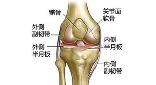 跑步真的伤膝盖么?(上)